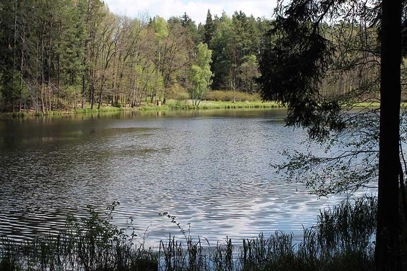 rybník Plocek
